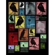 Raven 699