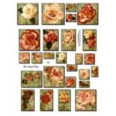 Vintage Roses 750