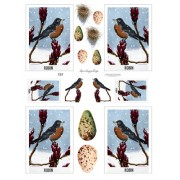 Robin Cards 757